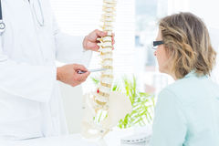 Doctor pointing anatomical spine Stock Image