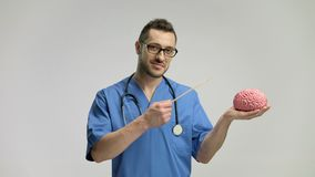 Doctor pointing at a brain model with a stick and smiling stock video