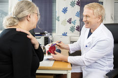 Doctor Pointing At Shoulder Rotator Cuff Model While Explaining royalty free stock photos