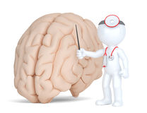 Doctor pointingat human brain. Medical illustration. Isolated. Contains clippin path Royalty Free Stock Image