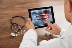 Doctor que mira la radiografía humana de los dientes Imágenes de archivo libres de regalías