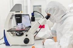 Doctor que trabaja con el microscopio El doctor conduce la investigación El doctor trabaja en el laboratorio fotos de archivo libres de regalías