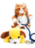 Doctor que trata al paciente Imagen de archivo libre de regalías