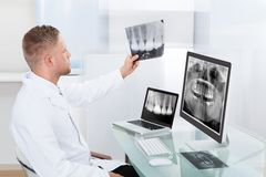 Doctor or radiologist looking at an x-ray online Royalty Free Stock Photography