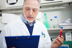Doctor reading a document while holding a test tube Stock Photography