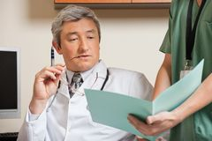 Doctor Reading Patient's File Stock Image