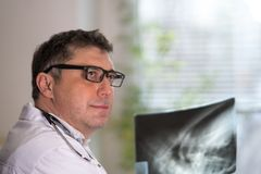 Doctor reading X-ray images Royalty Free Stock Image