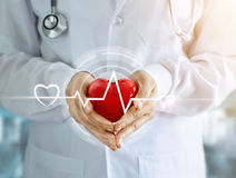 Doctor with red heart shape and icon heartbeat. Doctor with stethoscope and red heart shape with icon heartbeat in hands on hospital background Royalty Free Stock Photos