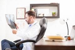 Doctor reviewing some x-rays in his office. Profile view of a good looking young doctor sitting in his office and looking at some x-rays of a patient Royalty Free Stock Photo