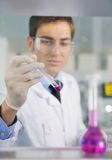 Doctor scientist in labaratory Stock Image