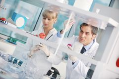 Doctor scientist in labaratory royalty free stock photography