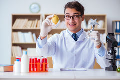The doctor scientist receiving prize for his research discovery. Doctor scientist receiving prize for his research discovery royalty free stock photo