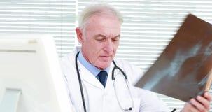 Doctor serio que examina una radiografía de la mujer embarazada metrajes