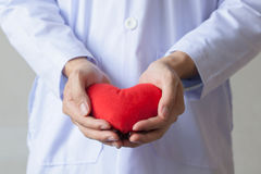 Doctor showing compassion and support holding red heart onto his chest in his coat. Doctor giving a heart shape object in white isolated background Royalty Free Stock Photography