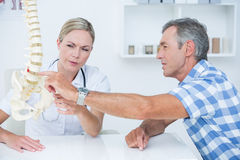 Doctor showing her patient a spine model Stock Image