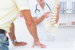 Doctor showing her patient a spine model Stock Images