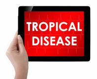 Doctor showing tablet with TROPICAL DISEASE text. Royalty Free Stock Photos