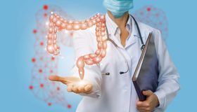 Doctor shows colon .