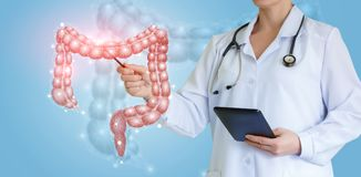 Doctor shows colon on virtual screen . Doctor shows colon on virtual screen over blue background royalty free illustration