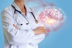 Doctor shows a human brain. Doctor shows a human brain concept design Stock Photo