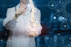 Doctor shows a human spine. On blue background royalty free stock photos
