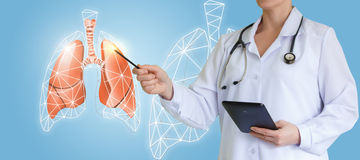 Doctor shows an interactive picture lungs. Doctor shows an interactive picture lungs concept design royalty free stock photos