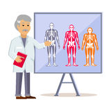 Doctor Shows Type Human Body. Ectomorph endomorph and mesomorph, skeleton people, health physique, healthy figure, healthcare human,  structure normal Stock Images