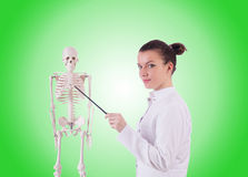 Doctor with skeleton against gradient Royalty Free Stock Photos