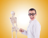 Doctor with skeleton on white Royalty Free Stock Images