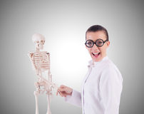 Doctor with skeleton on white Royalty Free Stock Image