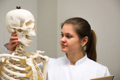 Doctor and skeleton Stock Image