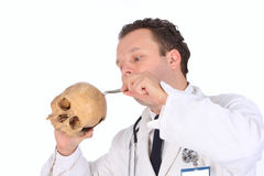 Doctor with skull Royalty Free Stock Photo