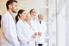 Doctor specialist and team. Competent doctor specialist and team at hospital royalty free stock image