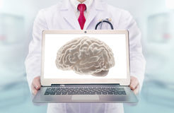 Doctor with stethoscope in a hospital. Brain on the laptop monitor Stock Image