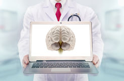Doctor with stethoscope in a hospital. Brain on the laptop monitor Royalty Free Stock Photos
