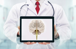 Doctor with stethoscope in a hospital. Brain on the tablet . Stock Images