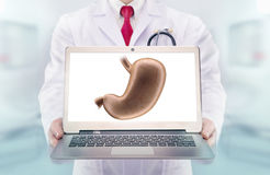 Doctor with stethoscope in a hospital. Stomach on the laptop monitor Royalty Free Stock Photos