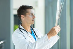 Doctor studying patient's x ray Stock Images