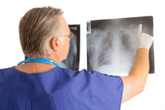 Doctor studying x-rays Stock Photography