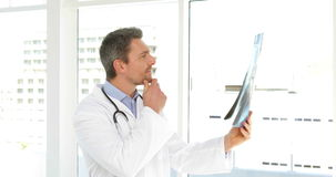 Doctor studying an xray Stock Photo