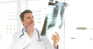 Doctor studying an xray and looking at camera Royalty Free Stock Photography