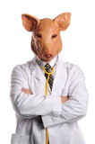 Doctor With Swine's Head Royalty Free Stock Images