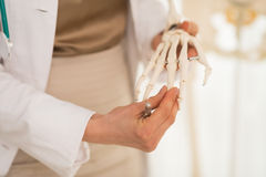 Doctor teaching anatomy using human skeleton model Stock Photo