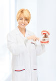 Doctor with toothbrush and jaws Royalty Free Stock Photo