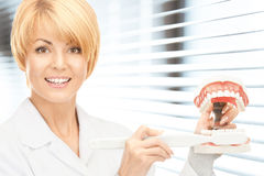 Doctor with toothbrush and jaws. Picture of attractive female doctor with toothbrush and jaws royalty free stock photo