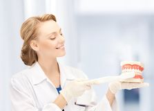 Doctor with toothbrush and jaws in hospital. Healthcare, medical and stomatology - doctor with toothbrush and jaws in hospital royalty free stock photo