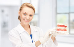 Doctor with toothbrush and jaws Stock Images