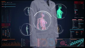 Doctor touching digital screen, Female body scanning blood vessel, lymphatic,  circulatory system in digital display dashboard. Blue X-ray stock video