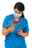 Doctor vet with chick in motion Royalty Free Stock Image