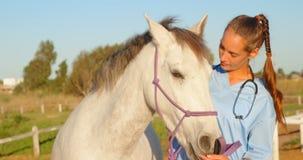 Doctor veterinario que se coloca con el caballo 4k almacen de metraje de vídeo